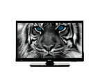 "20"" HD TV Estar LEDTV20D2T1"