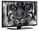 "22"" Full HD TV Estar LEDTV22D4T2"