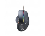 Mouse CANYON Apstar