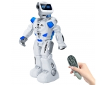 Robot Robert with remote
