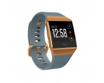 Pulsikell FITBIT Ionic - Slate Blue/Burnt Orange